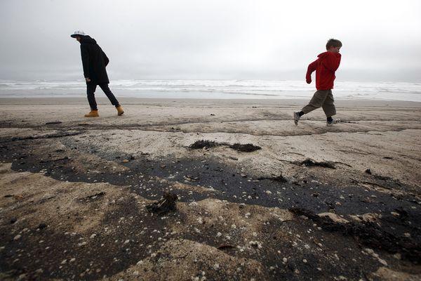Разлив нефти у берегов Новой Зеландии