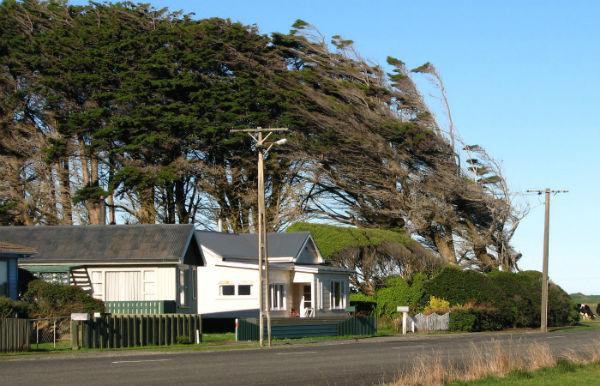 Орепуки, Новая Зеландия