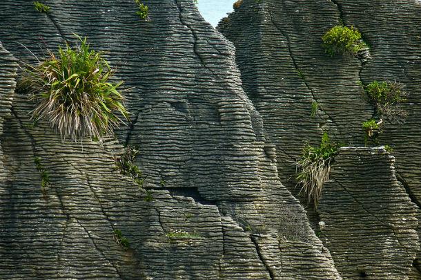 Блинные скалы в Национальном парке Папароа