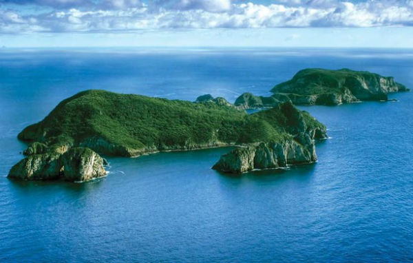 Острова бедных рыцарей (Poor Knights Island)