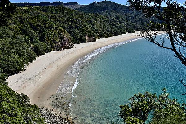 New Chums Beach, Коромандел, Северный остров